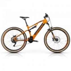 Ridon FS - Tigre Orange