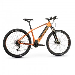 Ridon 10 - Tigre Orange